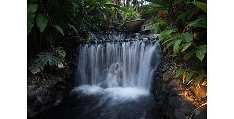 tabacon-hotsprings-costa-rica