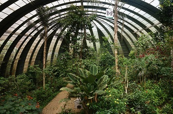 jardin-papillon-monteverde-costa-rica