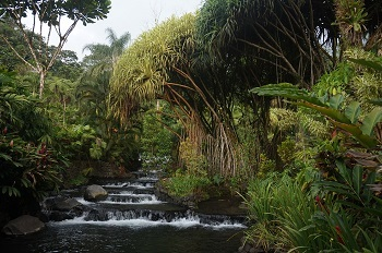 tabacon-hotsprings-2-costa-rica